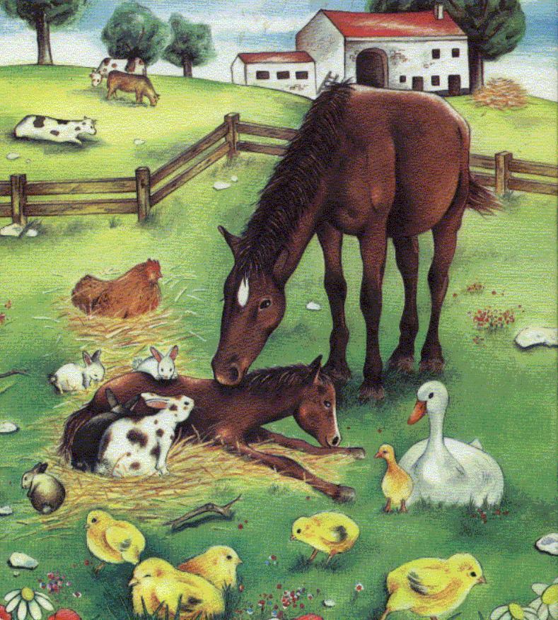 Tiere_auf_dem_Bauernhof_Cover